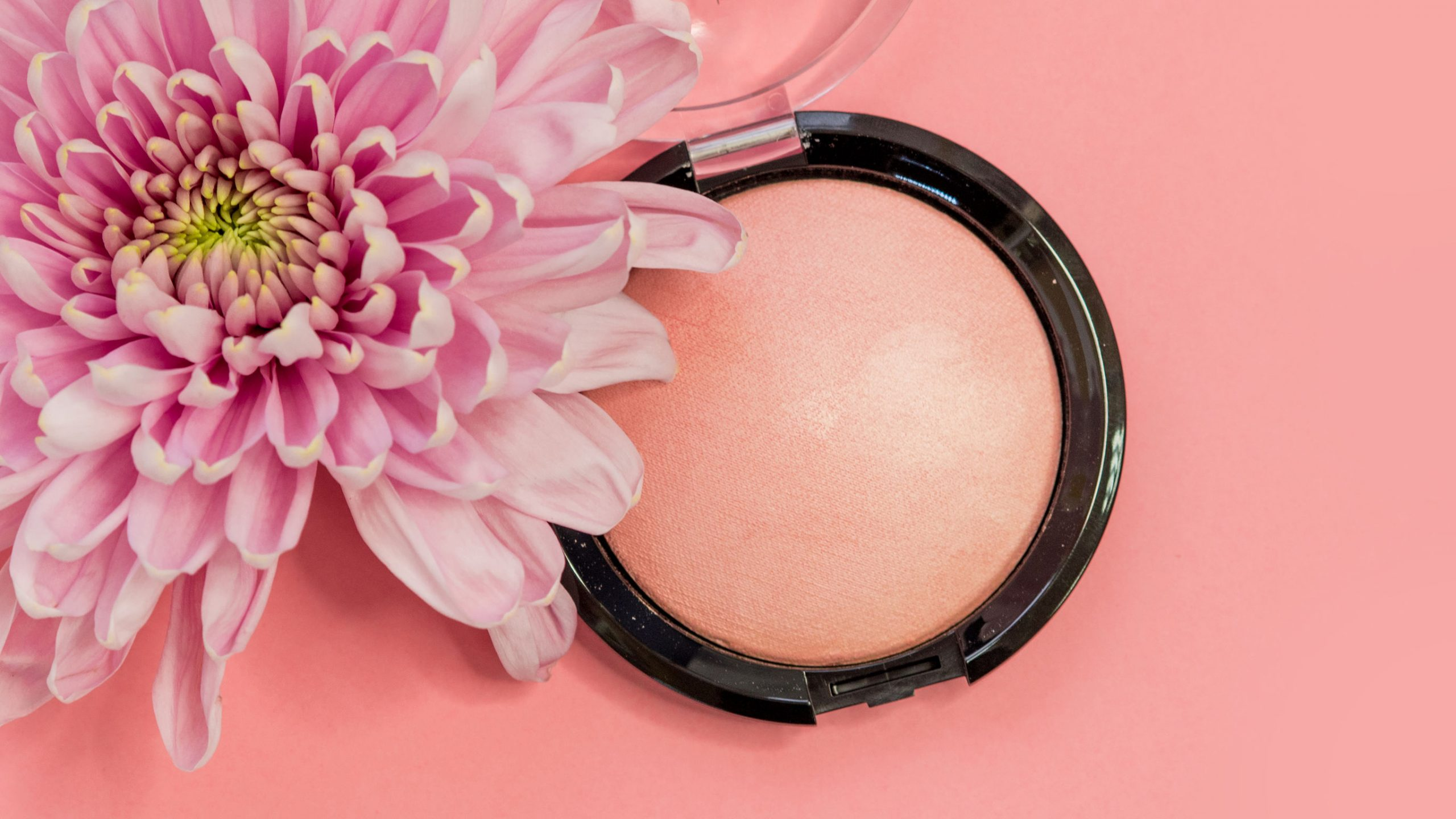 Best Blush 2021: Shopping Guide & Review